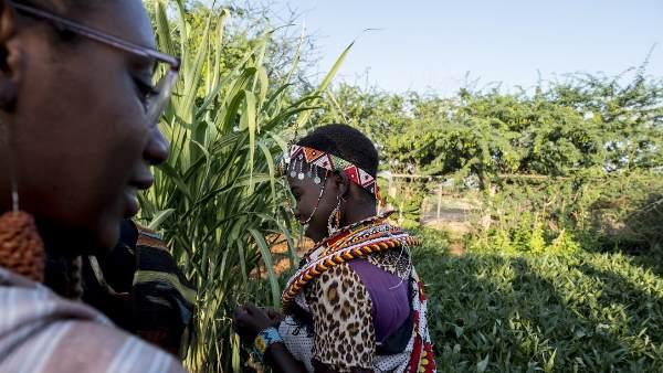 women-umoja-village-in-kenya